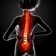 The Pain in Spinal Disk Problems